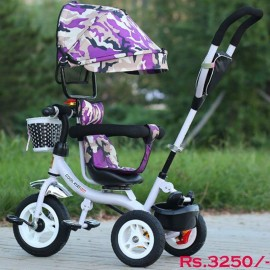 Baby World Buggy Tricycle With Canopy And Handle Print