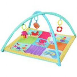 Baby World Printed Play Gym